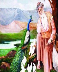 Feqiyê Teyran