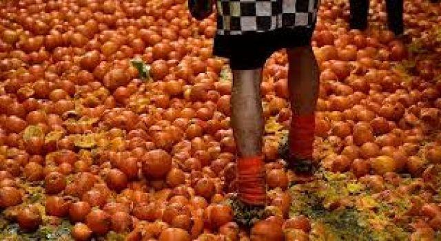 Uçak yolcuları, ekstra bagaj ücreti vermek istemeyince 20 dakikada 30 kilo portakalı yediler