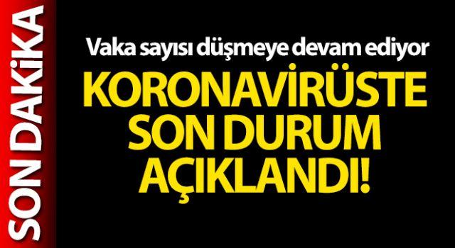 Türkiye'de son 24 saatte 24.733 koronavirüs vakası tespit edildi