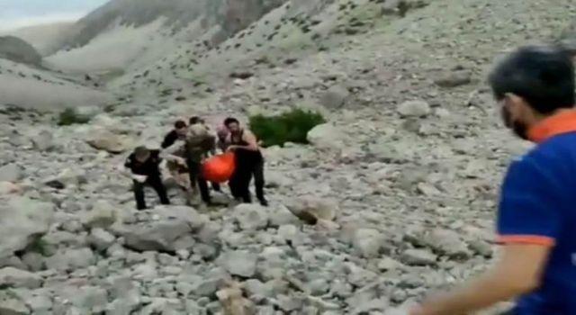 Çinli turist Dersim'de ayı saldırısına uğradı