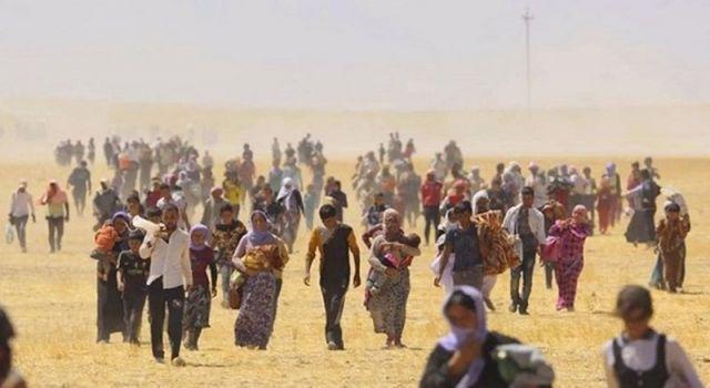 HDP'den Ezidi Katliamı açıklaması: Türkiye soykırım olarak tanımalı, tedbir almalı