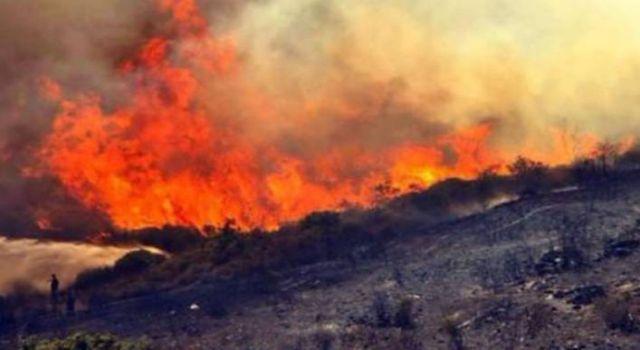 Orman yangınları 8'inci gününde: 6 ilde, 11 yangın sürüyor