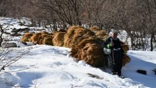 Çığ riski altında saman taşıma nesaisi
