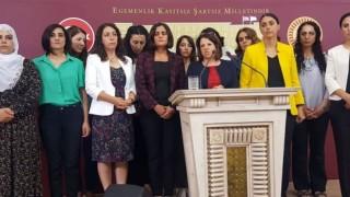HDP'li 22 kadın milletvekilinden kadın bakana tek soru