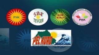 Kürt partilerinden TSK operasyonlarına tepki, PKK'ye çağrı