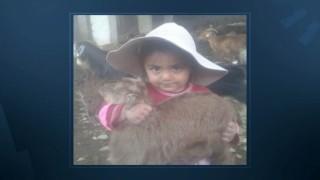 İki ailenin kavgasında 6 yaşındaki çocuk hayatını kaybetti