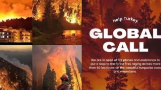 Orman yangınlarıyla ilgili paylaşımlara 'Cumhurbaşkanına hakaret' ve 'devleti aciz gösterme' soruşturması