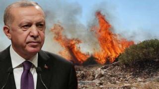 The Times'tan Erdoğan : Ülkesinin yanışını uzaktan izliyor