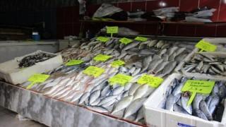 Arya Balıkçılık sezona merhaba dedi