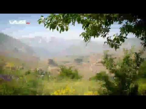 Hakkari Pinyanişi Aşireti Dengbejleri -Herema Colemêrg -Eşîra Pinyanişi